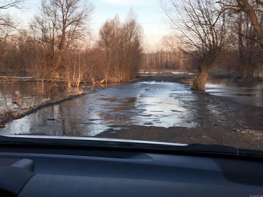 Уровень воды вОби врайоне Барнаула продолжает подниматься