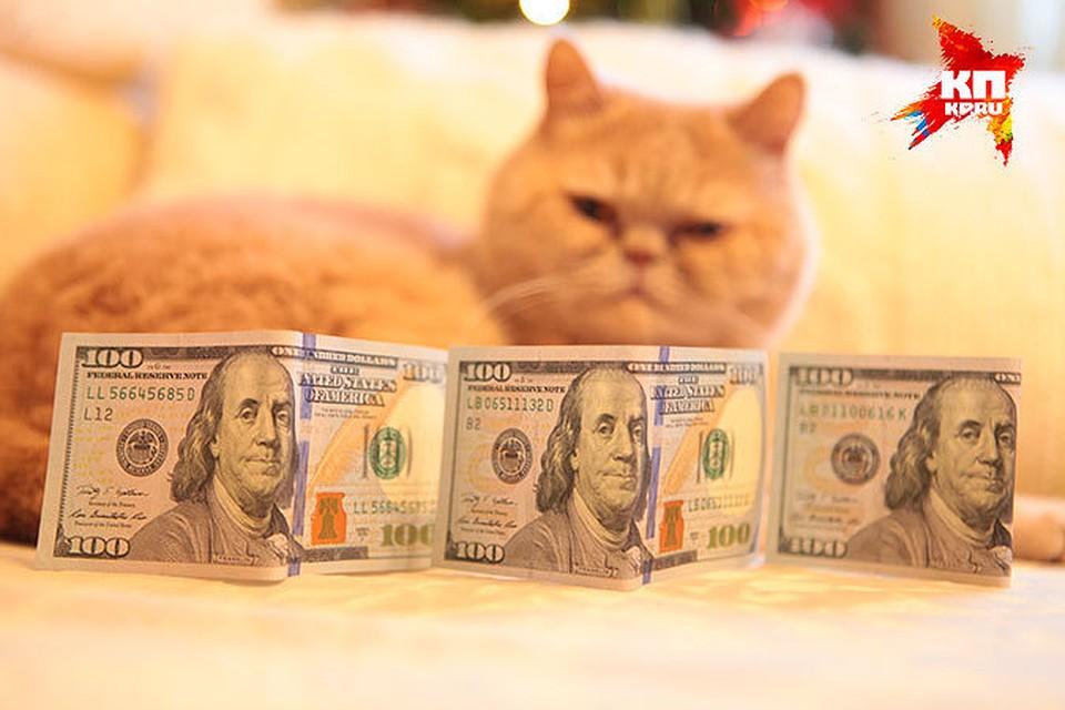 БВФБ: 4мая доллар иевро подорожали, русский руб. дешевеет