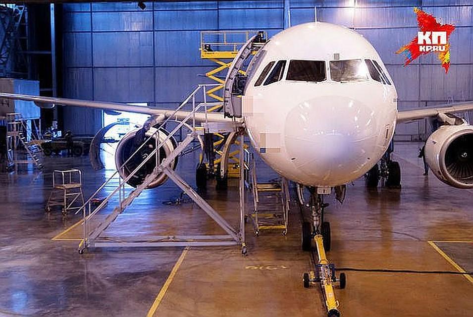 Самолет, вылетевший изЕкатеринбурга вТурцию, вернулся из-за угодившей в мотор птицы