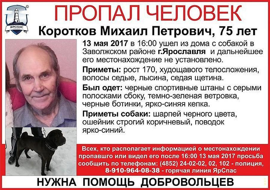 ВЗаволжском районе пенсионер ушел гулять ссобакой ипропал