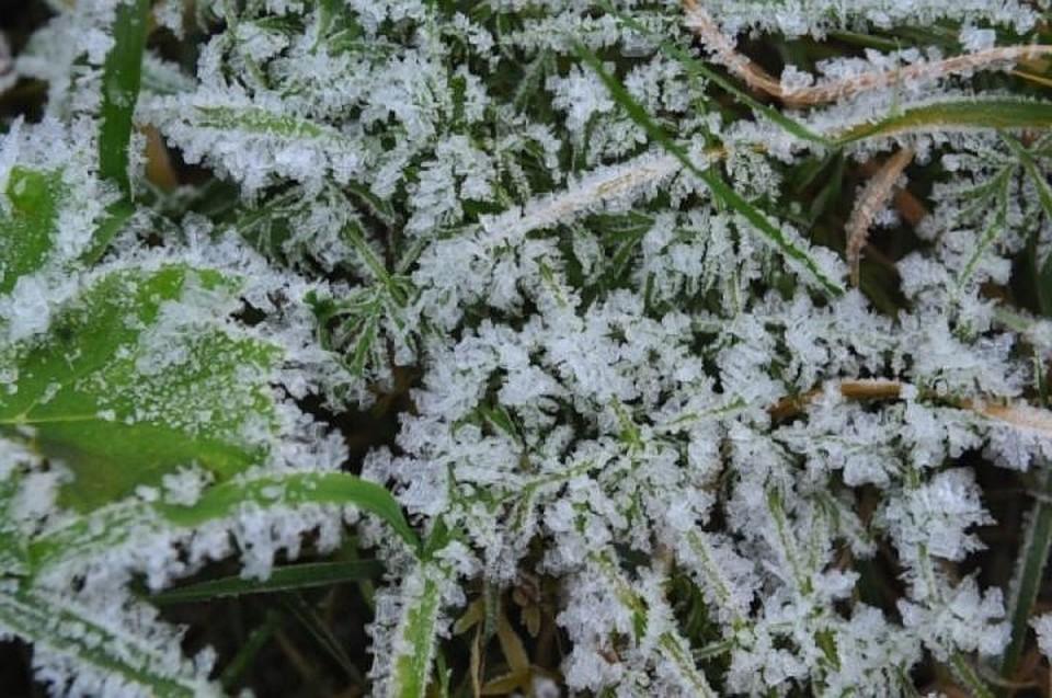 23мая вКазани ожидают заморозки