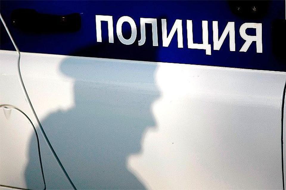 ВВолгоградской области вмусорном баке отыскали  тело новорожденного малыша