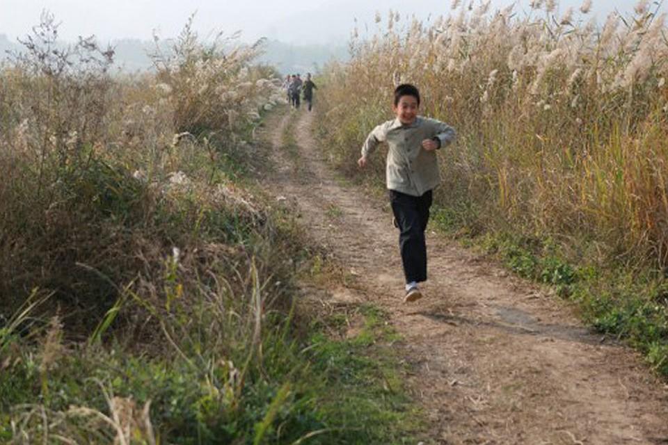 Главный приз ММКФ получила китайская картина «Хохлатый ибис»