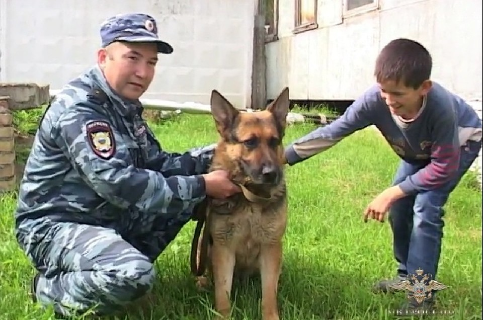 ВБашкирии кинолог ссобакой спас пенсионера и отыскал пропавшего ребенка