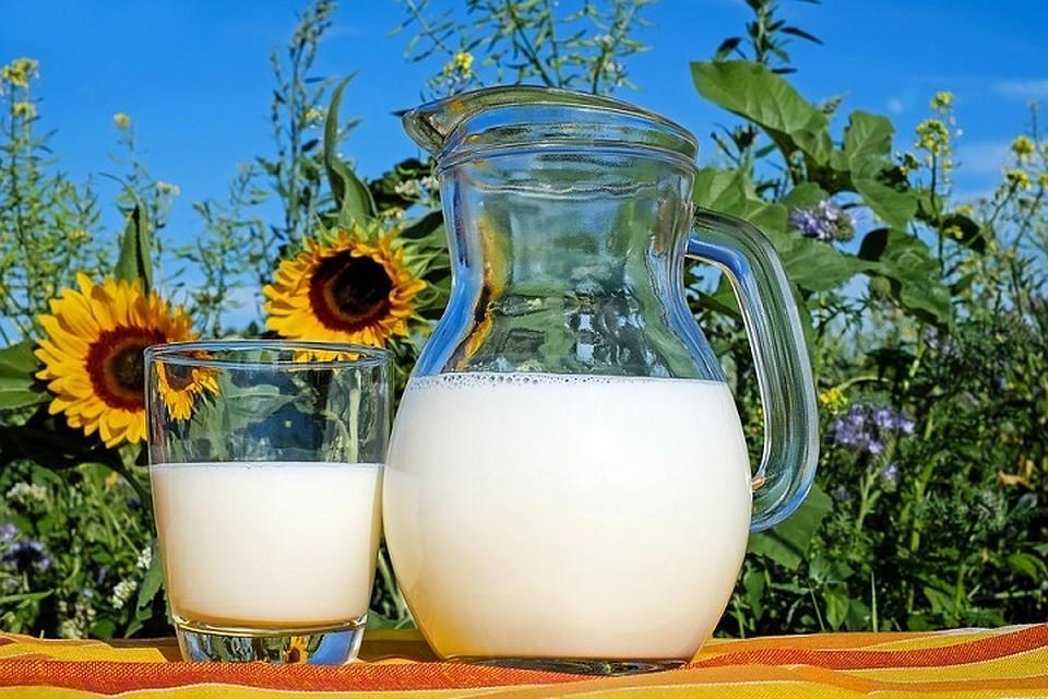ВТюменской области практически готов новый «молочный» инвестпроект
