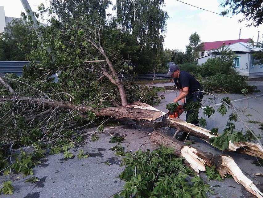 ВИшиме устраняют последствия урагана