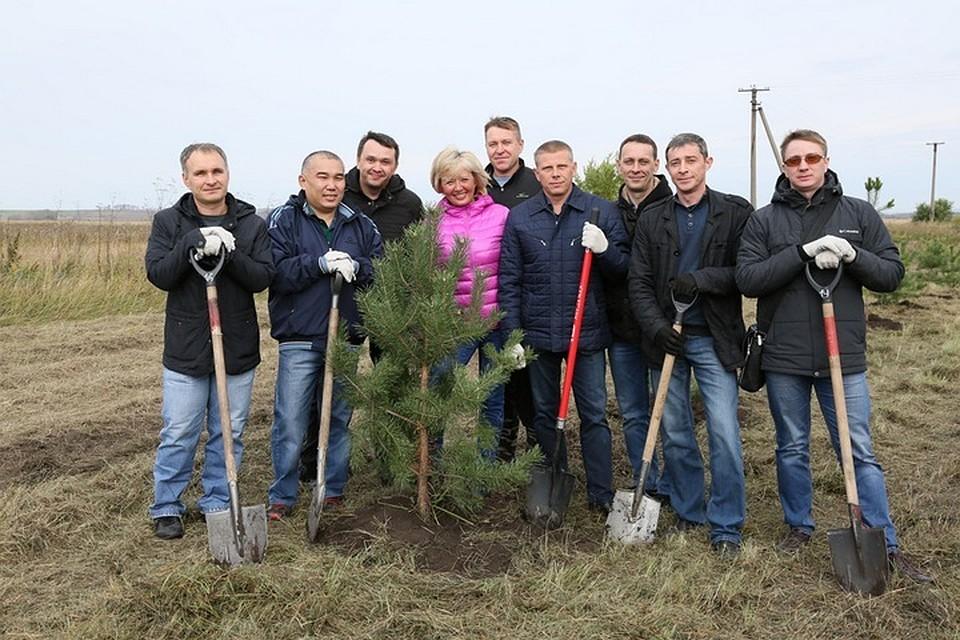 ВКузбассе задень высадили неменее 126 тыс. деревьев