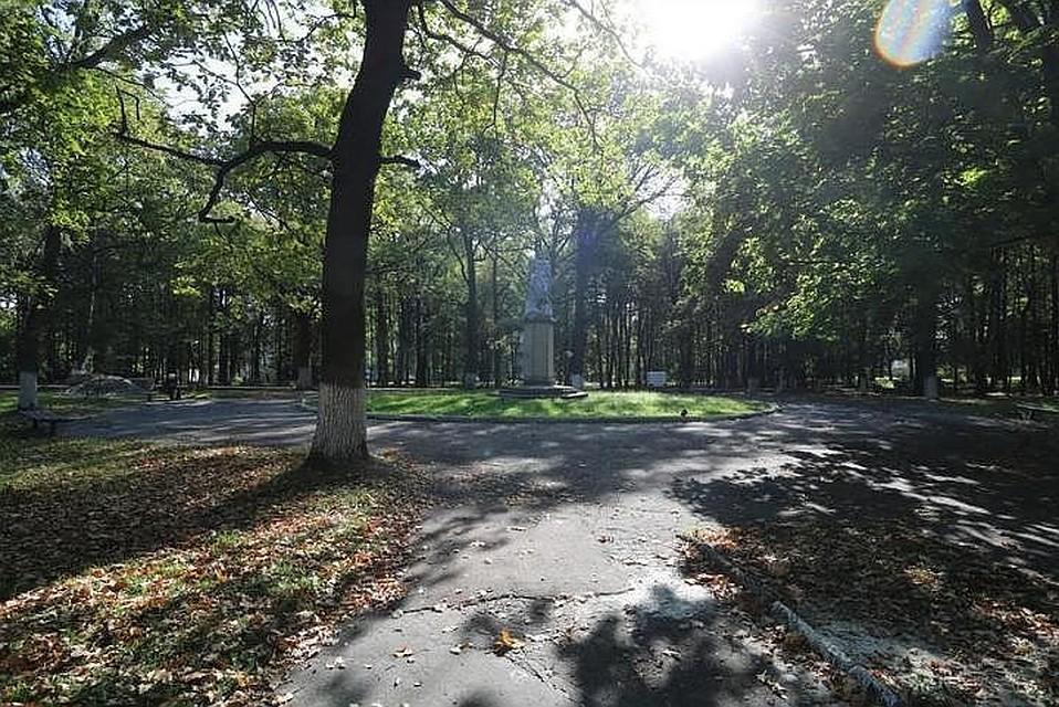 ВПушкинском парке вБрянске установят 150 новых фонарей