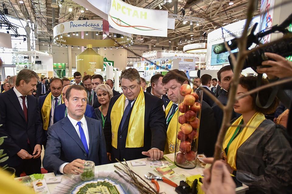 «Золотая осень» дала Ставрополью 7 инвестпроектов на33 млрд. руб.