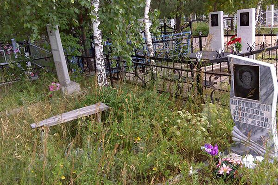 Гражданин Донского воровал железные ограды смогил