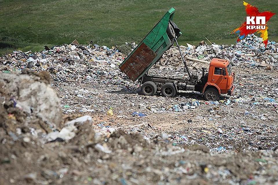 ВПетербурге одобрили создание регионального оператора мусора