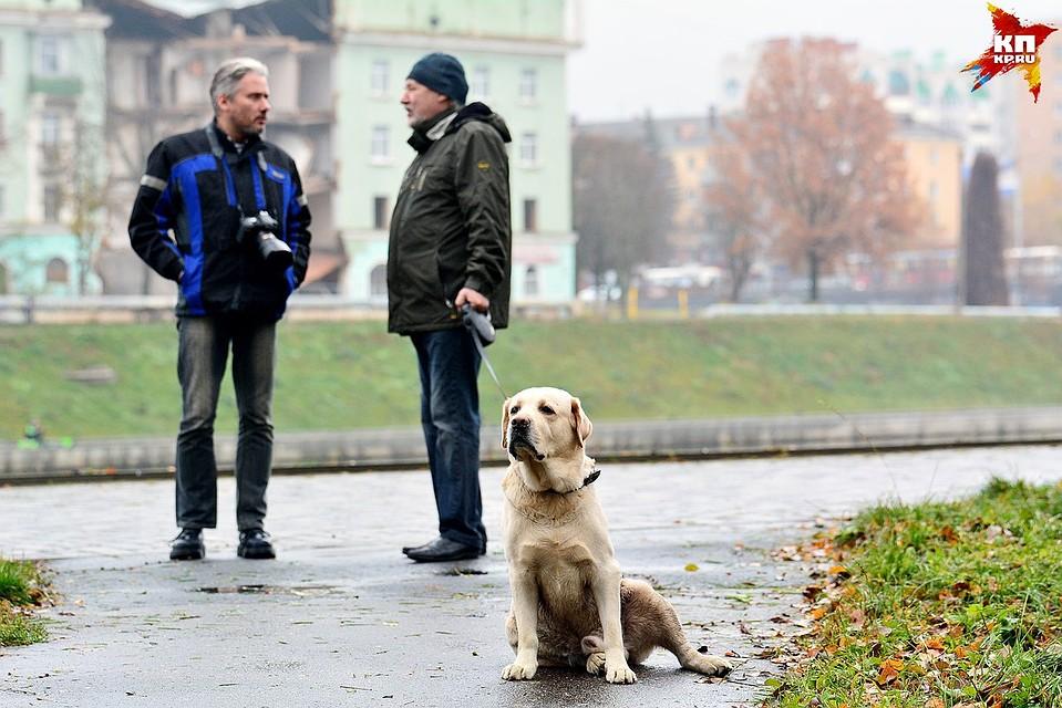 НаЮжном Урале теплая погода продержится доконца рабочей недели