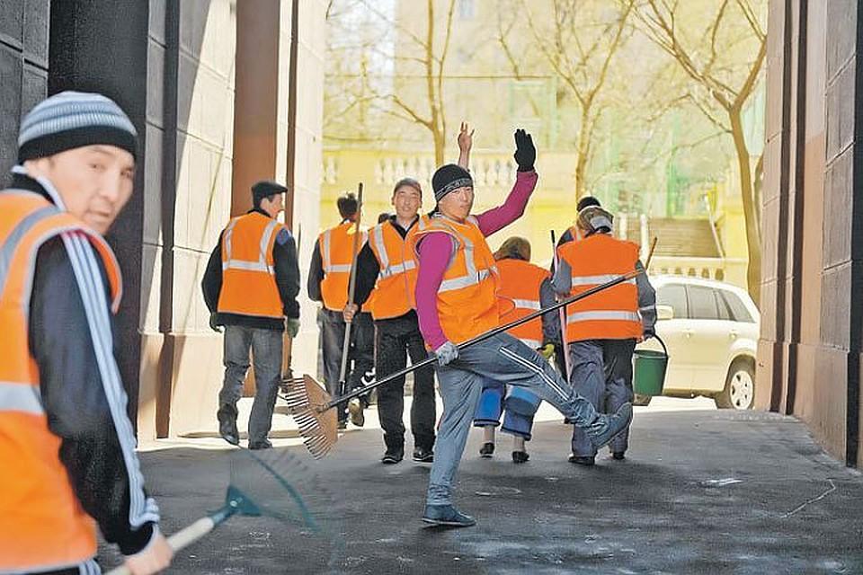 Межведомственные рабочие группы по сопротивлению незаконной миграции сформируют наКубани