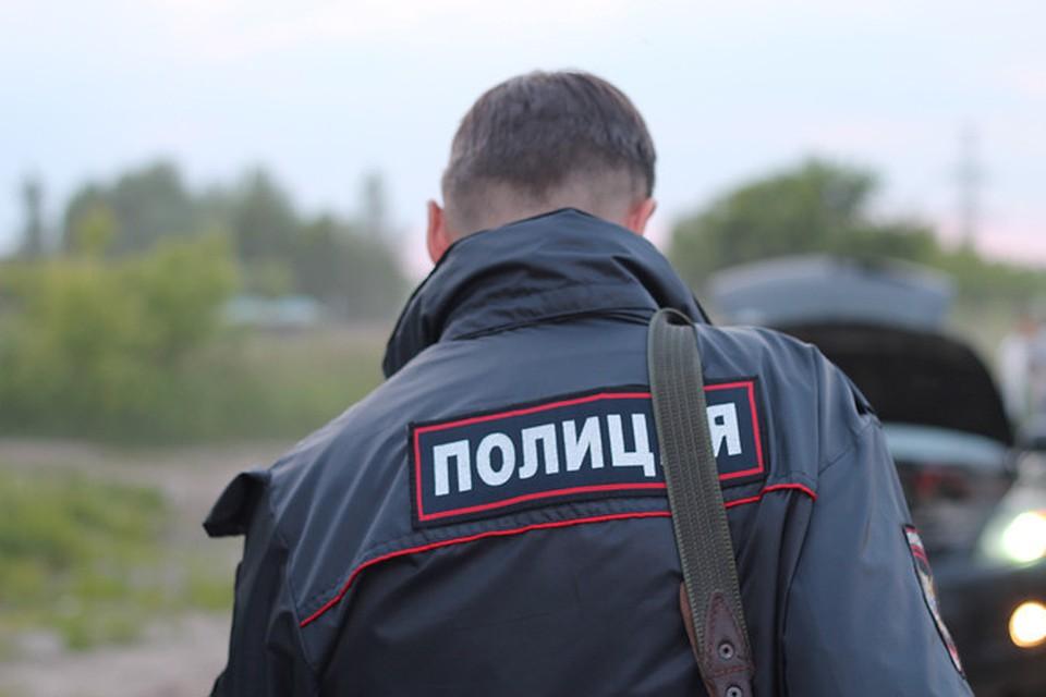 Дебошир, плюнувший вполицейского, предстанет перед судом вНовосибирске