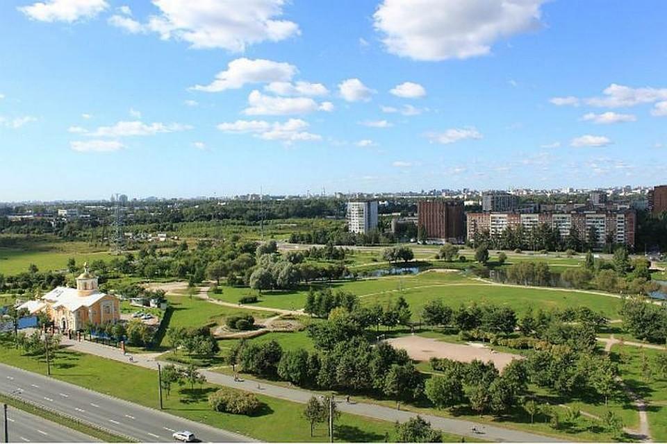 Парламентарии Петербурга невернули статус зеленых насаждений парку Малиновка