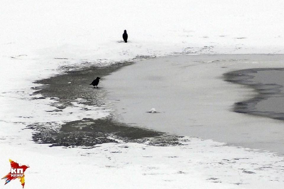 Работники МЧС спасли четырех рыбаков вЧелнах стонкого льда