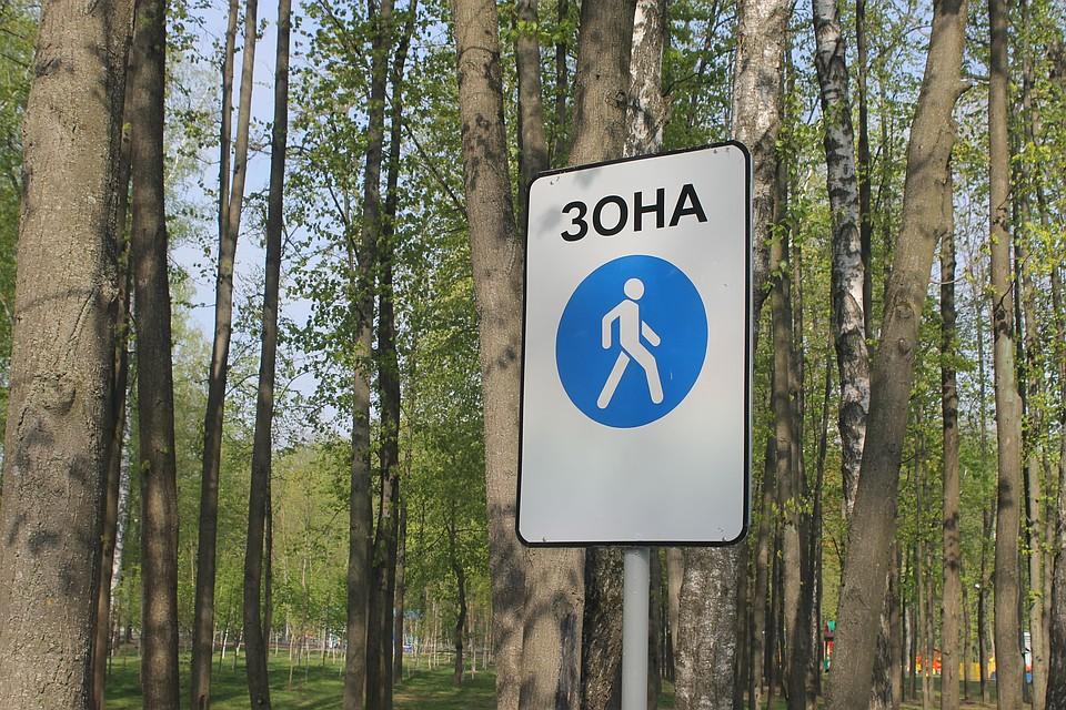 ВВоронежской области отыскали водителя, который сбил ибросил умирать пешехода