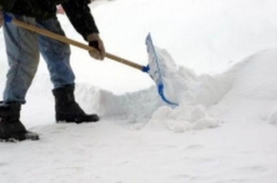 ВНовосибирске неплательщиков алиментов отправили лепить снеговиков