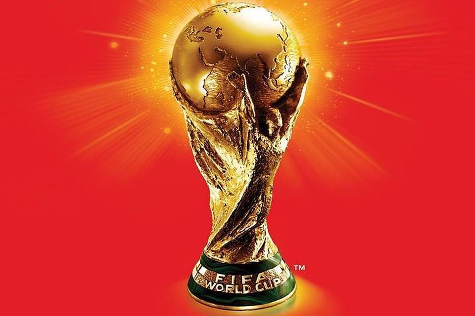 Кубок мира пофутболу привезут нанабережную Новосибирска— известна дата