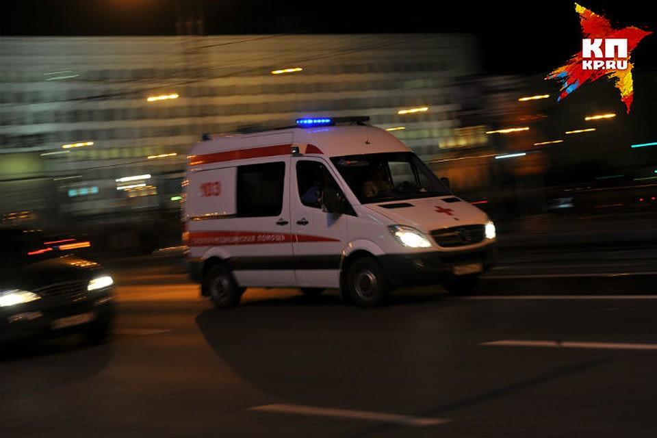 ВОмской области 3-х летняя  девочка утонула вяме сводой