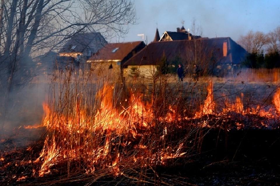 ВБашкирии запретили сжигать сухую траву