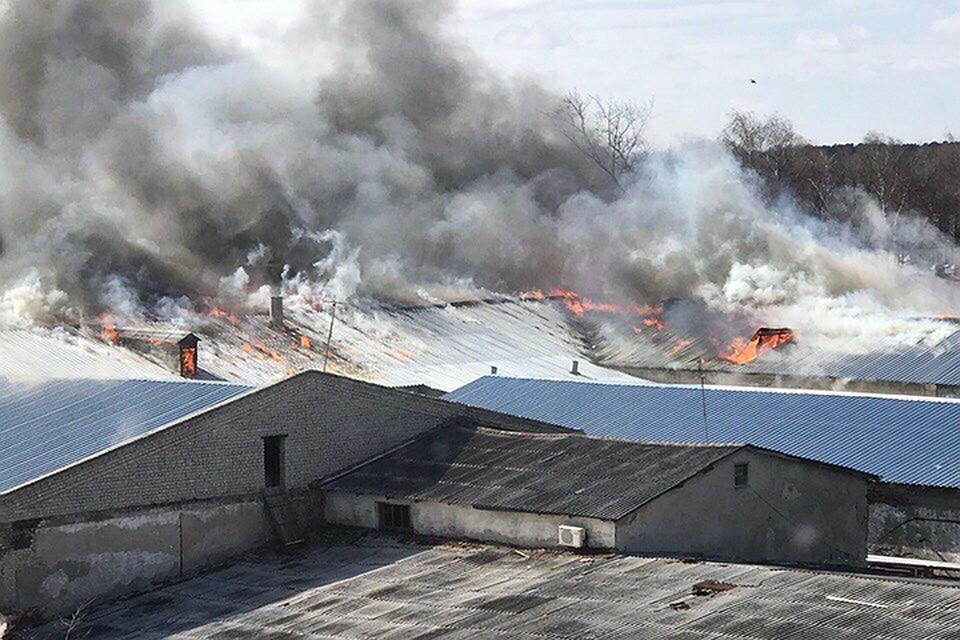 Пожарные локализовали возгорание накожевенном заводе вБогородске
