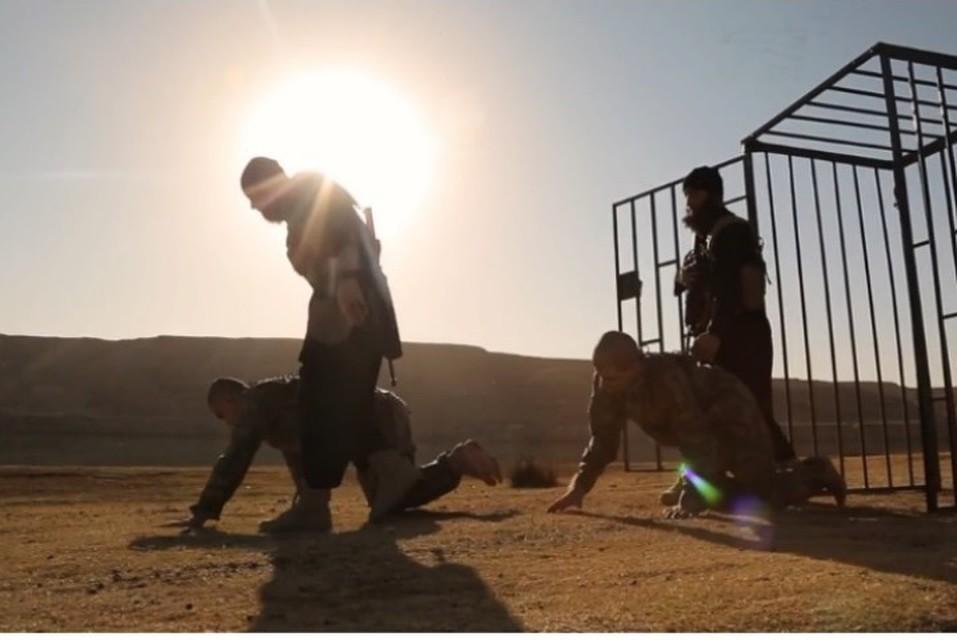ВСирии террористы захватили вплен около 700 человек