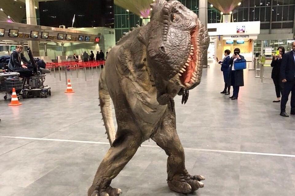 Ночью в«Пулково» бегал динозавр