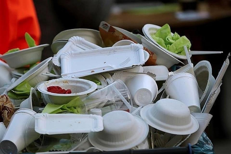 Минприроды РФ готовит запрет наодноразовую посуду изпластика