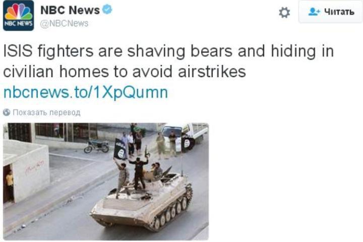 «ИГИЛ бреют медведей и прячутся в домах мирных жителей, чтобы избежать авианалетов»