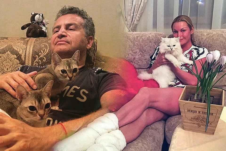 В международный день кошек «Комсомолка» собрала обладателей самых мимимишных домашних питомцев