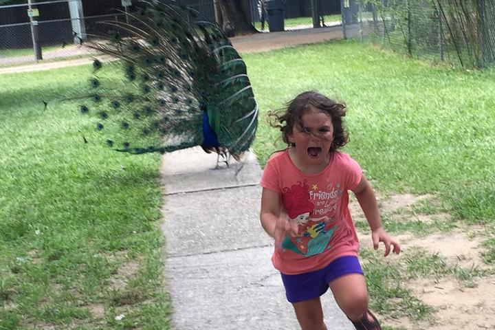 На лице ребенка отразился весь ужас мира