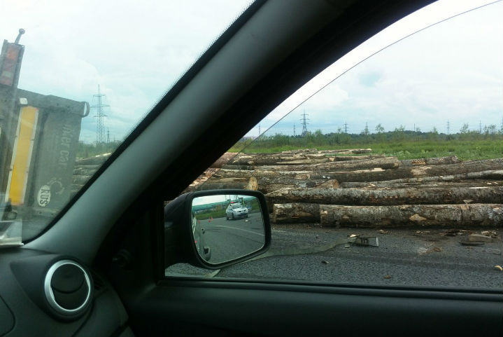 НаСофийской улице вПетербурге перевернулся лесовоз сбревнами