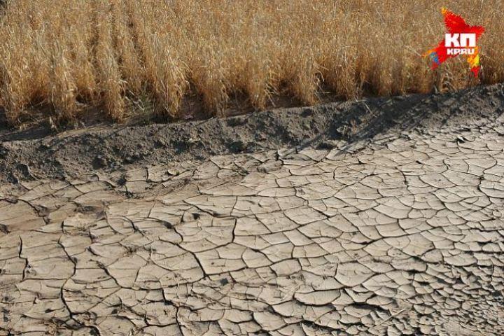 Из-за засухи Удмуртия потеряла 826 млн