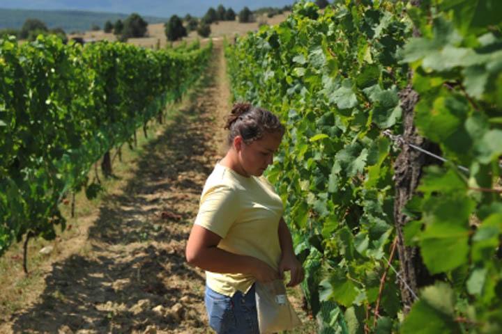 Объединение землевладельцев должно помочь преодолеть кризис в аграрной отрасли