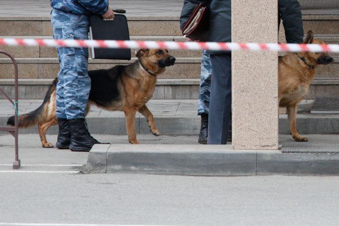 ВКабардино-Балкарии правоохранители обнаружили труп иавтомобиль сбоеприпасами