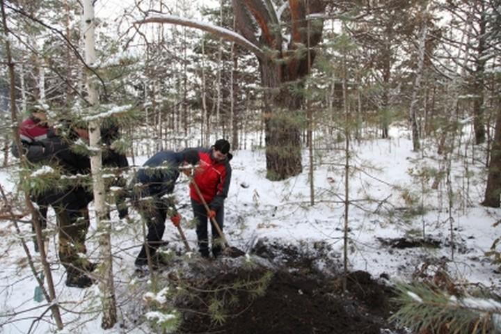 Гражданин Красноярска из-за кредитов задушил зятя электрошнуром
