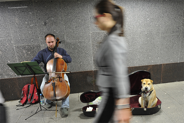 В столицеРФ пройдет трехмесячный фестиваль «Уличный музыкант»
