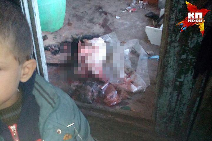 Семья, в которой ребенок стал свидетелем расчленения собаки, поставлена на учет полиции в Хабаровске