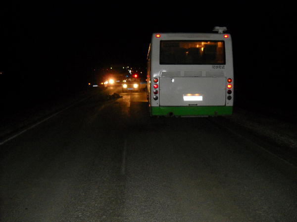 Автобус «Лиаз» насмерть сбил пешехода натрассе вМихайловском районе