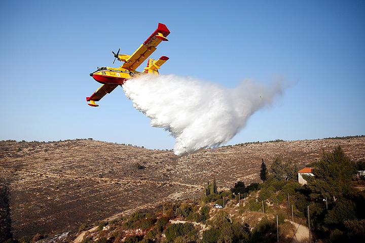 Все лесные пожары вИзраиле потушены