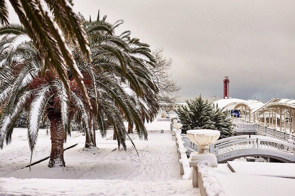 Снегопад неповлиял насистемы жизнеобеспечения— Мэрия Сочи