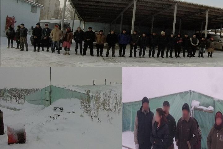 ВВолгограде ищут предпринимателя, привлекшего ктруду 22 узбеков икитайцев