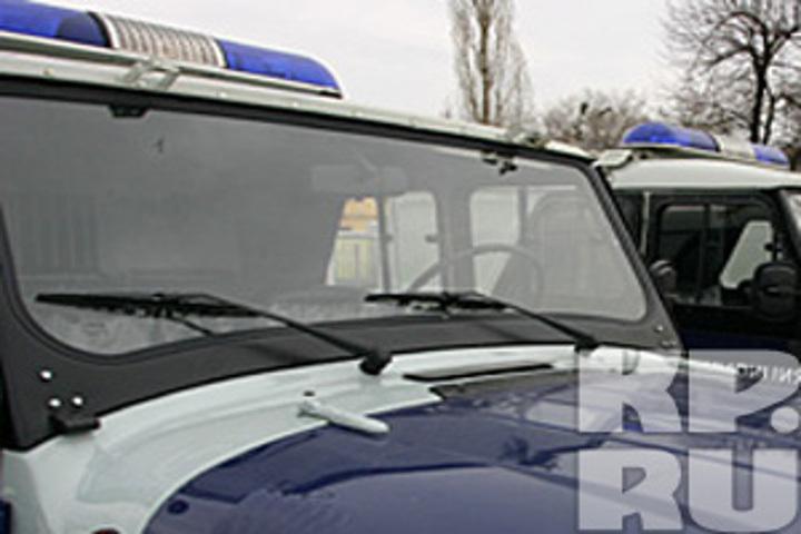ВКурской области собаками найден мертвый младенец