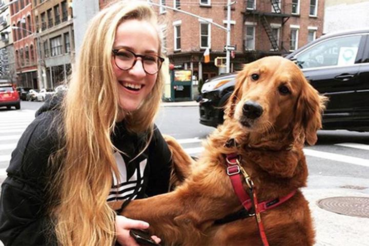 ВНью-Йорке любящая объятия собачка прославилась всоциальных сетях