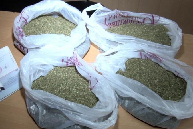 ВРостовской области задержали мужчину, хранившего 8кг марихуаны начердаке