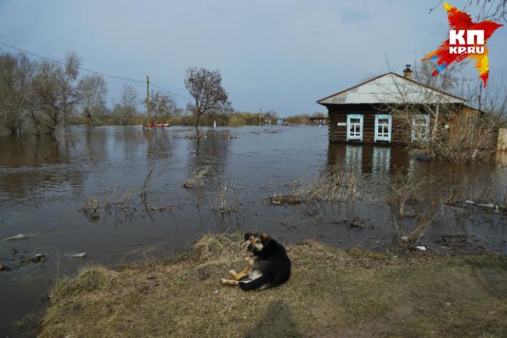 Пятилетнему жителю Омской области забыли выдать компенсацию завесенний паводок