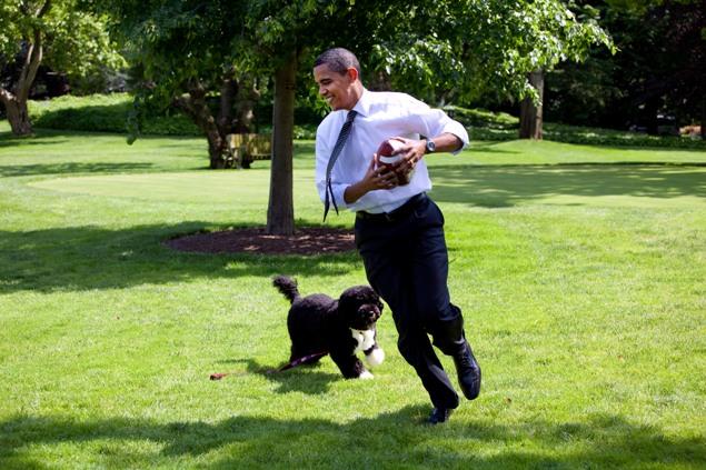 Или поиграть с мячом на лужайке у Белого дома Фото: GLOBAL LOOK PRESS