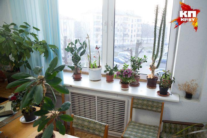 В кабинете у Владимира Семеновича - очень много цветов. Фото: Павел МАРТИНЧИК