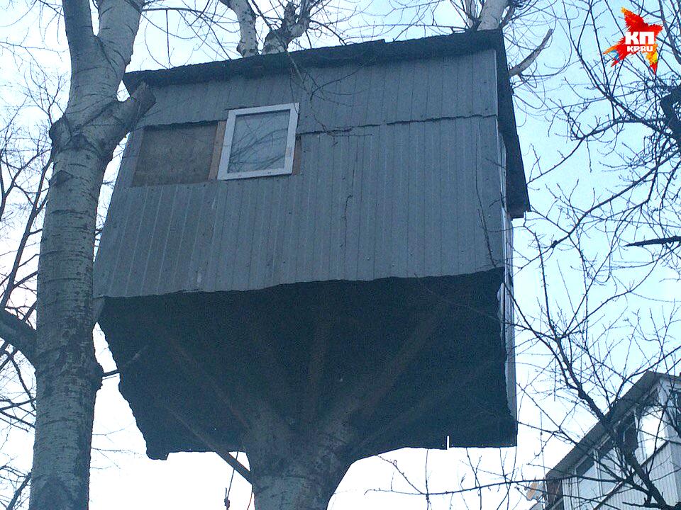 В этом домике есть даже окошко. Фото: Евгения ХИЛЬКО